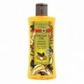 Bohemia Herbs - kosmetika argan - vlasový šampon 250 ml s arganovým olejem