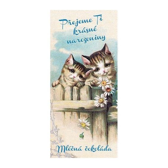 Darčeková mliečna čokoláda Krásne narodeniny - mačky, 100 g (verzia v SK)