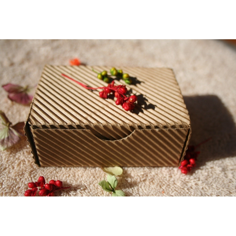 10a752529 Darčeková krabička z vlnitej lepenky | TOPMYDLÁ