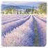 Dekoračná kachlička - Levanduľové pole s dedinou