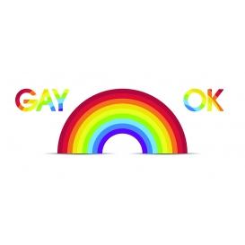 Darčekový kondóm - Gay ok