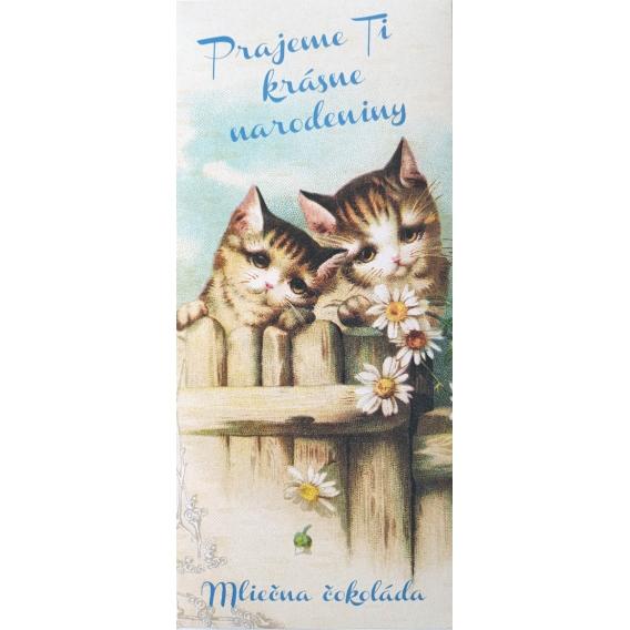 Darčeková mliečna čokoláda 100 g - Krásne narodeniny mačičky