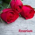 Kozmetika z ruže - Rosarium